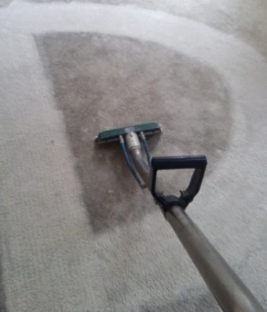 Carpet Cleaning services in Pacific Palisades