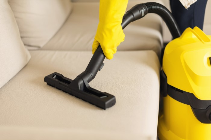 Couch/Sofa Cleaning Services